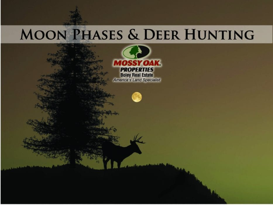 THE EFFECT MOON PHASE HAS ON HUNTING DEER