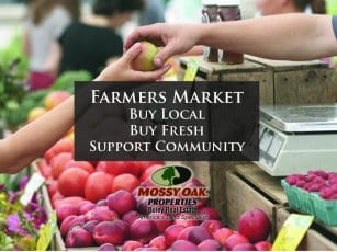 Local Farmers Market Information