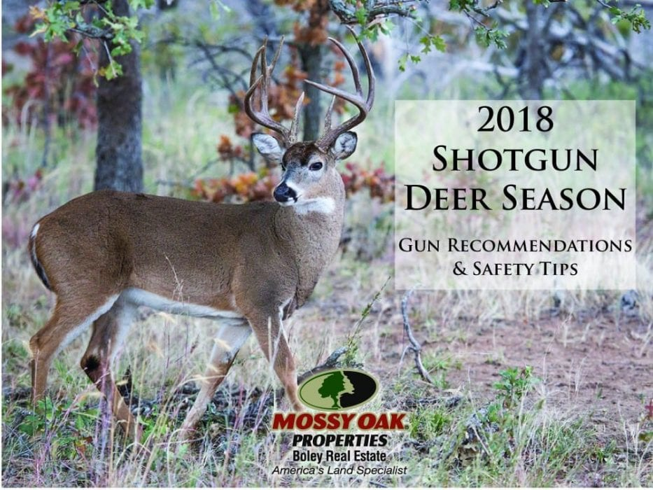 Top 5 Slug Gun Recommendations