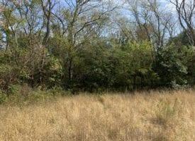 87 m/l acres for sale in Van Buren County, Iowa