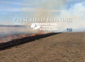 It is Prescribed Burning Season