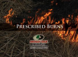 Prescribed Burning Season Is Here!