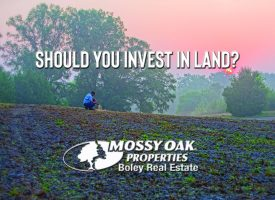 Should You Invest In Land?