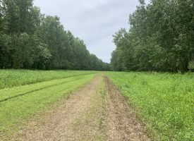 285 m/l acres in Lee County, IA
