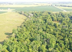 LAND AUCTION – 153 Acres M/L Van Buren County Recreational/CRP Investment Farm