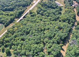 +/- 43 Acres for sale Centerville, Iowa