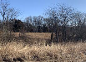 90 Acres Van Buren County, Iowa For Sale