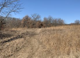130 Acres For Sale Van Buren County, Iowa