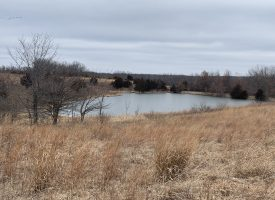 62 +/- acres in Van Buren County, Iowa