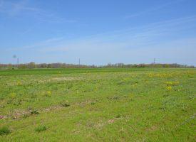 65 M/L Acres in Davis County, Iowa