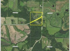 37 +/- Acre Hunting Property For Sale In Lucas County, Iowa