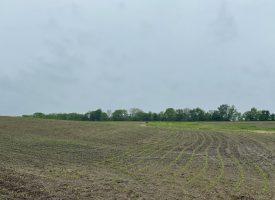 451 +/- Acre farm for sale in Van Buren County, IA