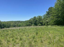 75 acres in Northeast Van Buren County, IA