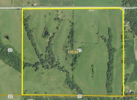 136 +/- acres For Sale in Appanoose County, IA