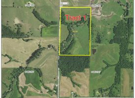 131 m/l Acre Farm to sell at Auction Sept. 25
