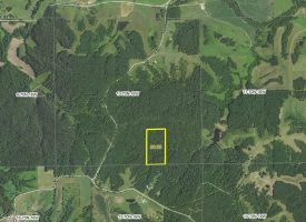 20 +/- acres For Sale in Unionville, IA