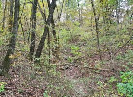 2.5 Acres For Sale in Unionville, IA