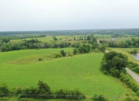 28 m/l Acres For Sale in Monroe County Iowa